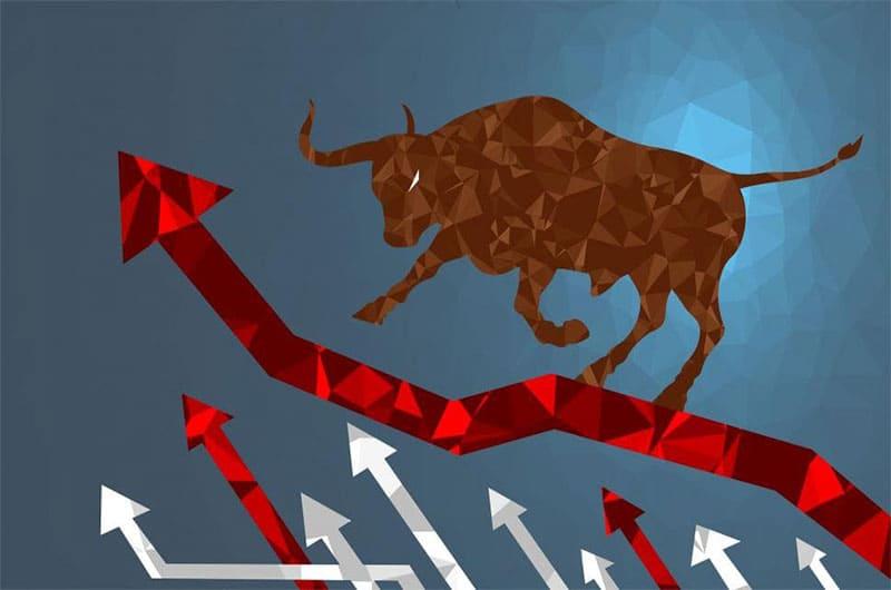 Что означают быки и медведи на фондовой бирже и рынке Форекс?
